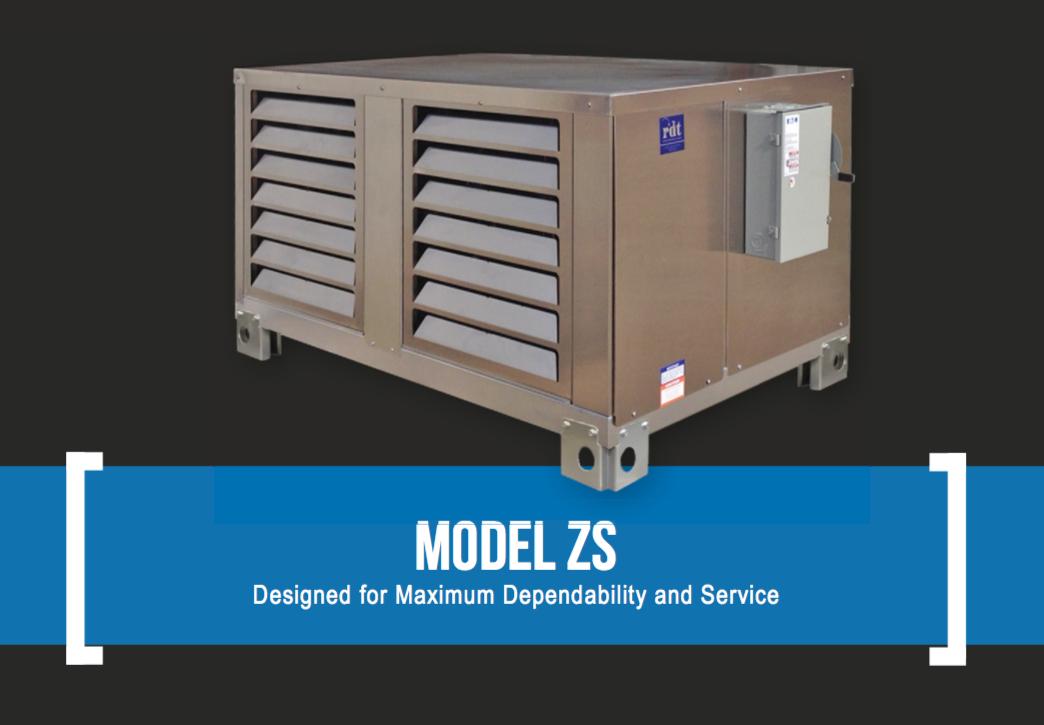 The Basics of the RDT Model ZS