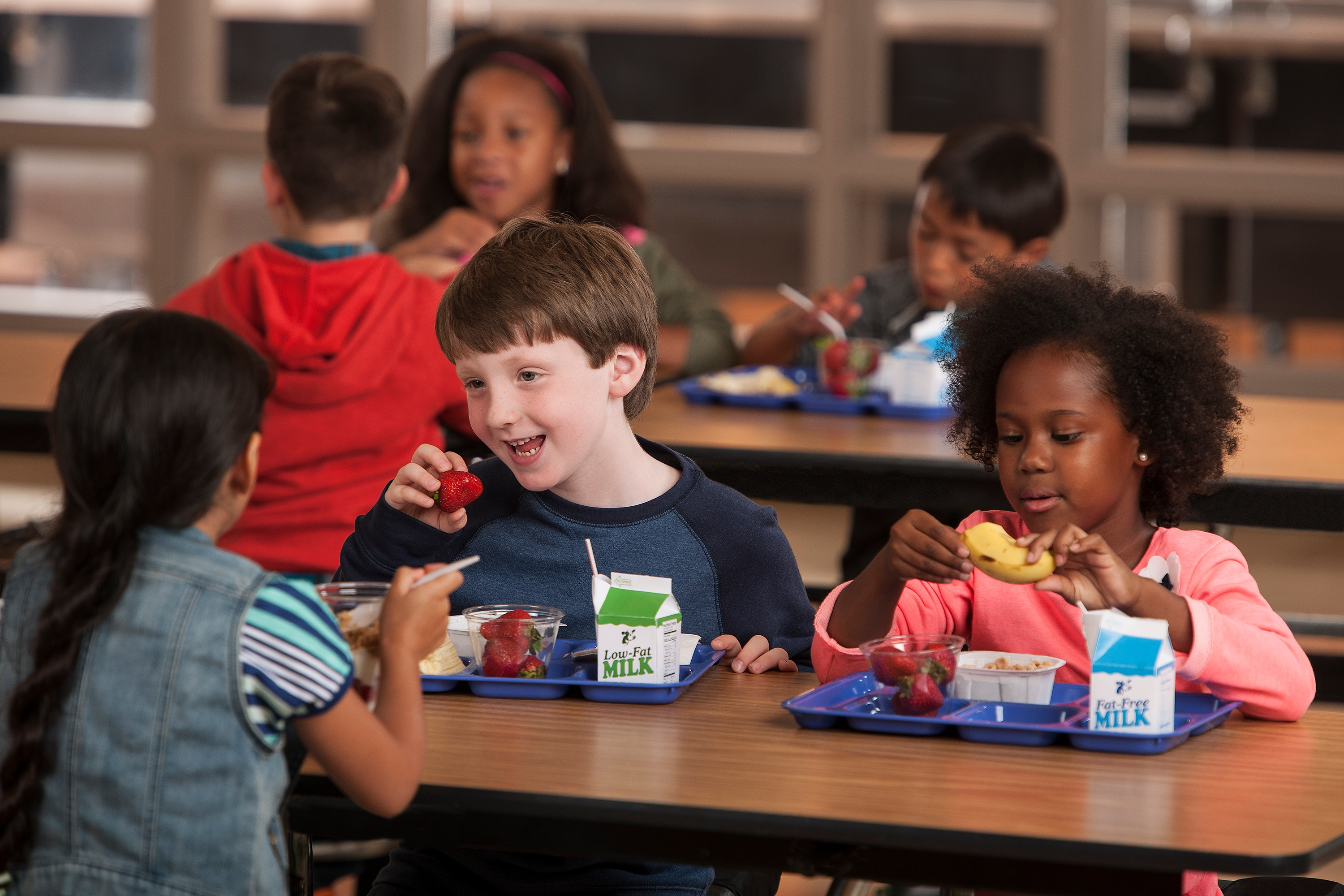 The Top Three School Foodservice Refrigeration Challenges